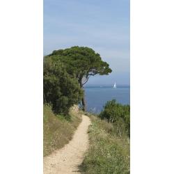 "Sticker Mur d'Image ""Chemin de bord de mer - 1"""
