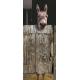 Panneau décoratif pour porte WC